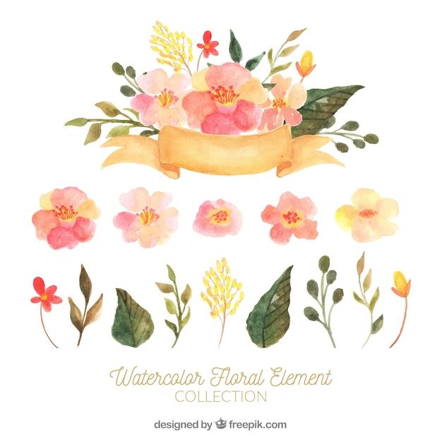Прекрасный набор акварельных цветочных элементов Бесплатные векторы