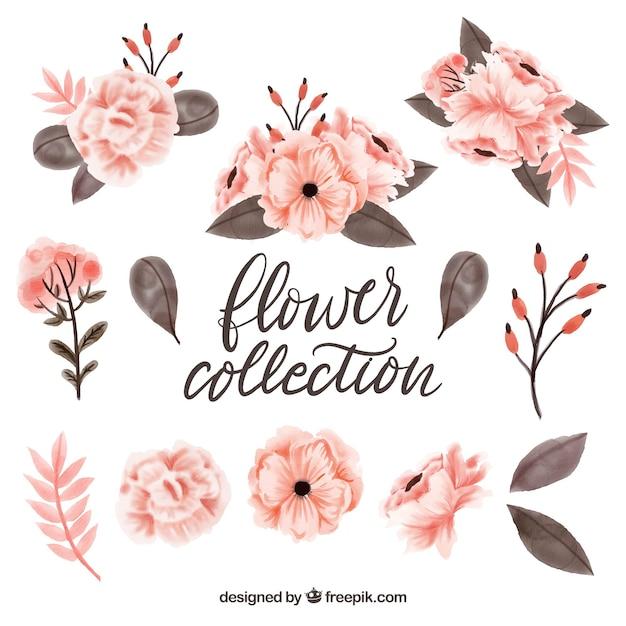 Коллекция симпатичных акварельных цветочных элементов Бесплатные векторы
