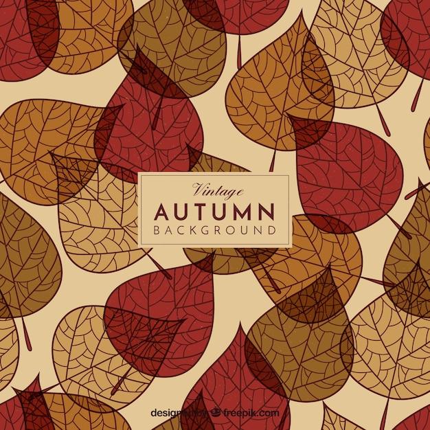 素敵な手が秋の葉の背景を描いた 無料ベクター