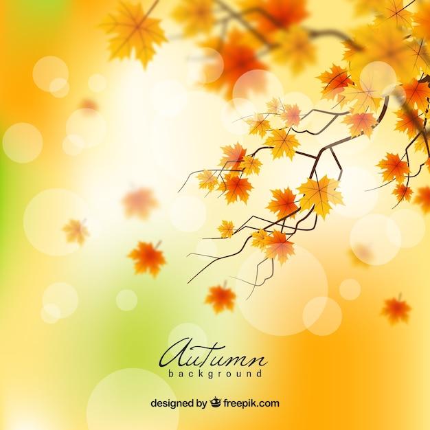 現実的なデザインと素敵な秋の背景 無料ベクター