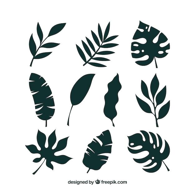 シルエットスタイルの熱帯雨林コレクション 無料ベクター