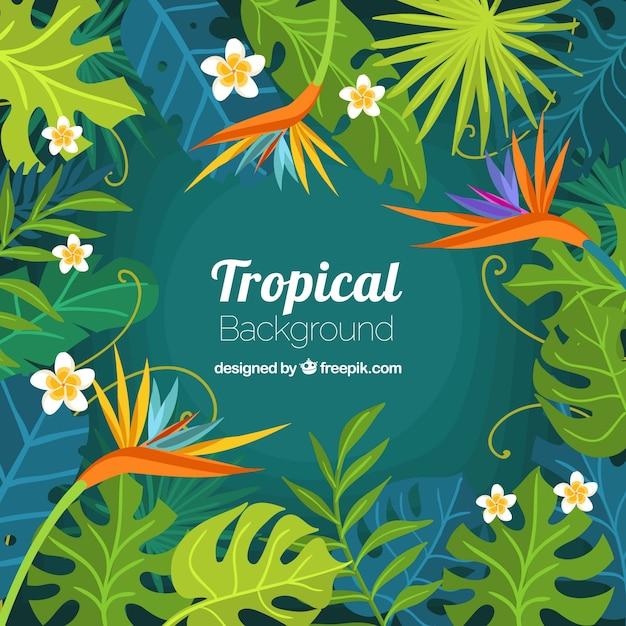 フラットなデザインのカラフルな熱帯の背景 無料ベクター