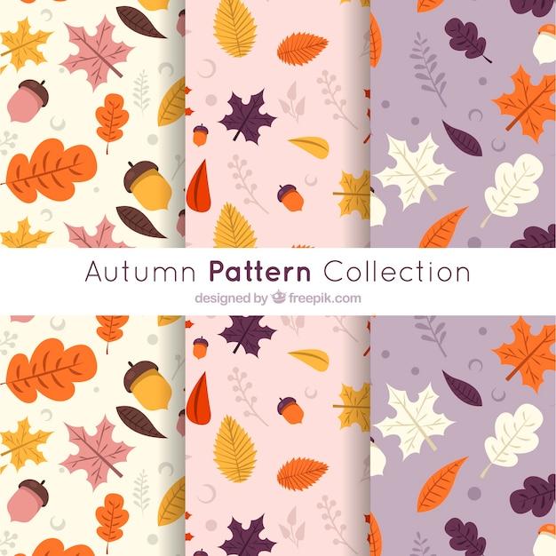 現代の秋のパターンコレクション 無料ベクター