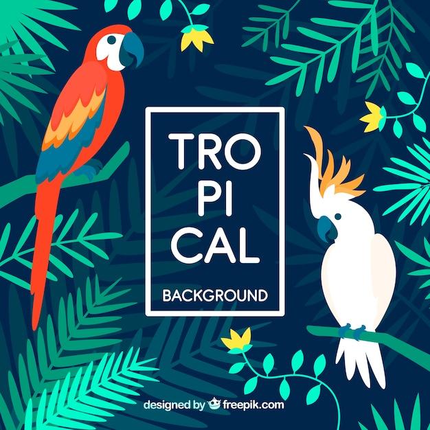 Красочный тропический фон с плоским дизайном Бесплатные векторы