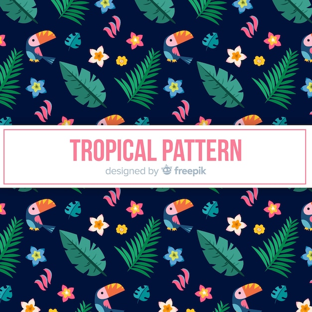 トゥカンと葉のカラフルな熱帯の柄 無料ベクター