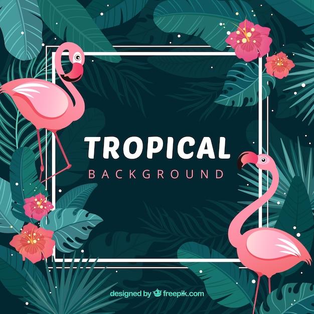 Прекрасный тропический фон с плоским дизайном Бесплатные векторы
