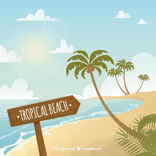 ヤシの木とトロピカルビーチの背景 無料ベクター