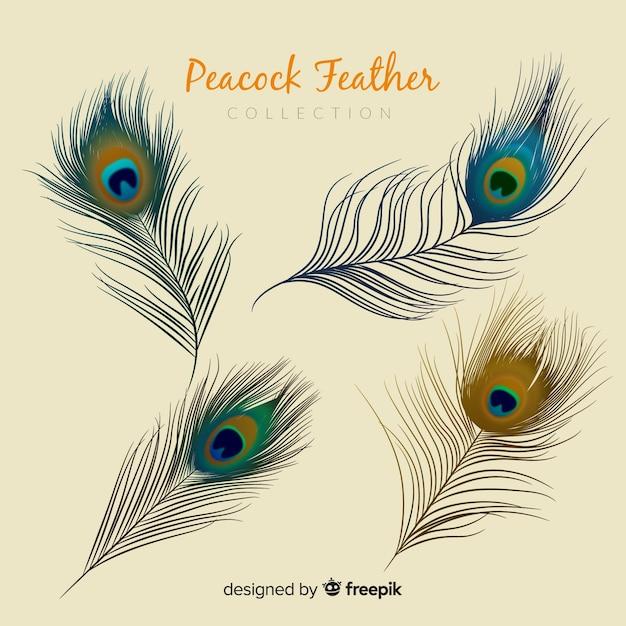 Современная коллекция перьев павлина с реалистичным дизайном Бесплатные векторы