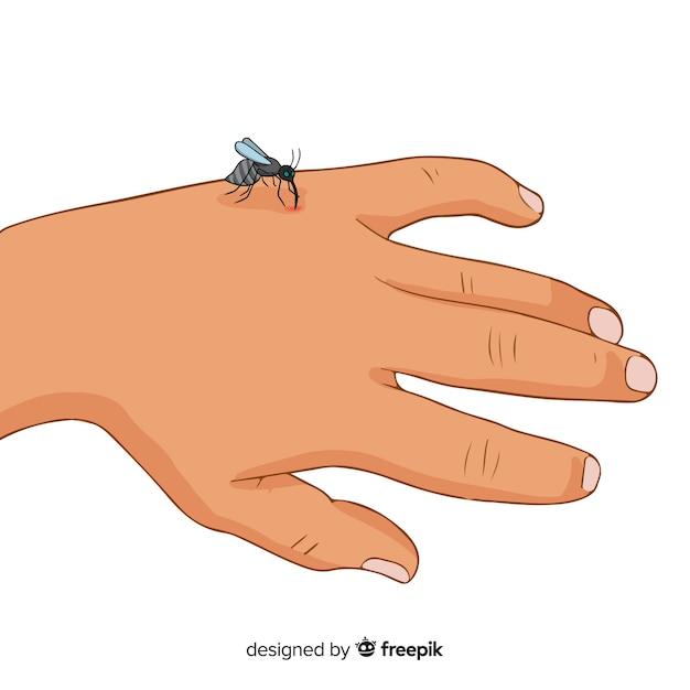 手を噛んだ蚊の手で描いた 無料ベクター