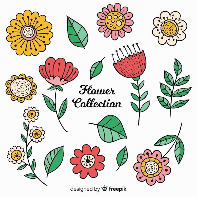 Прекрасная коллекция рисованных цветов Бесплатные векторы