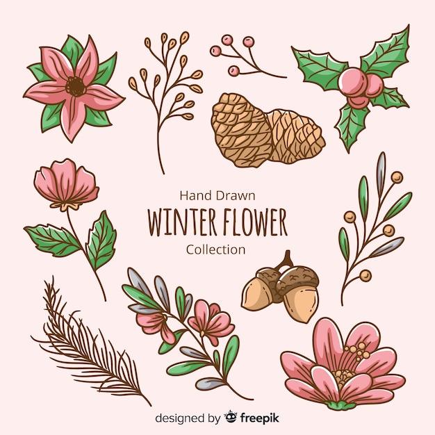 手描きの冬の花のコレクション 無料ベクター