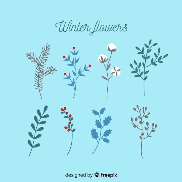 冬の花のコレクション 無料ベクター