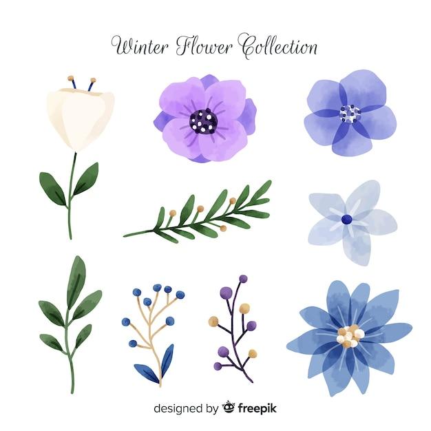 水彩冬の花のコレクション 無料ベクター