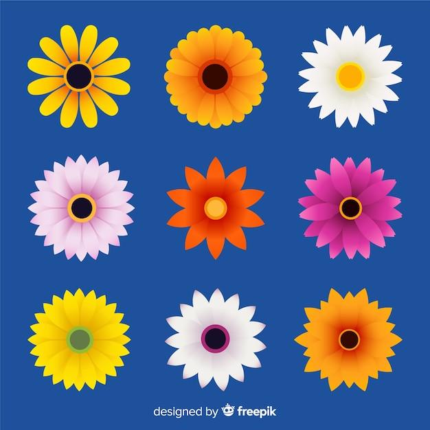 春の花コレクション 無料ベクター