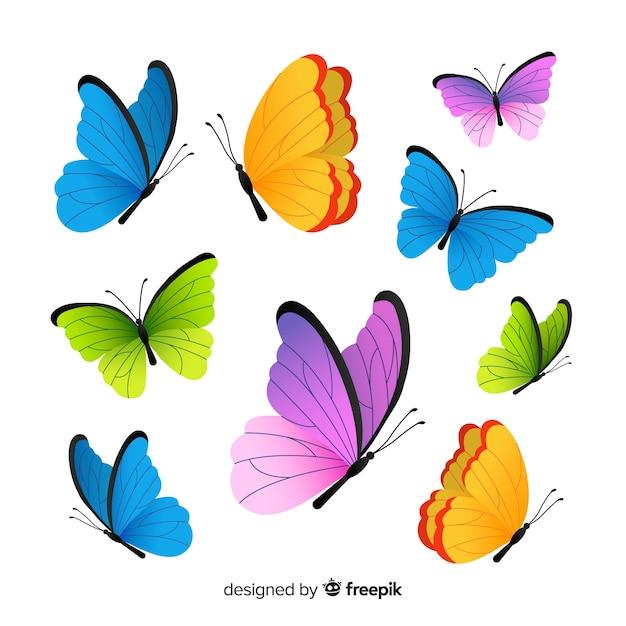Коллекция бабочек Бесплатные векторы