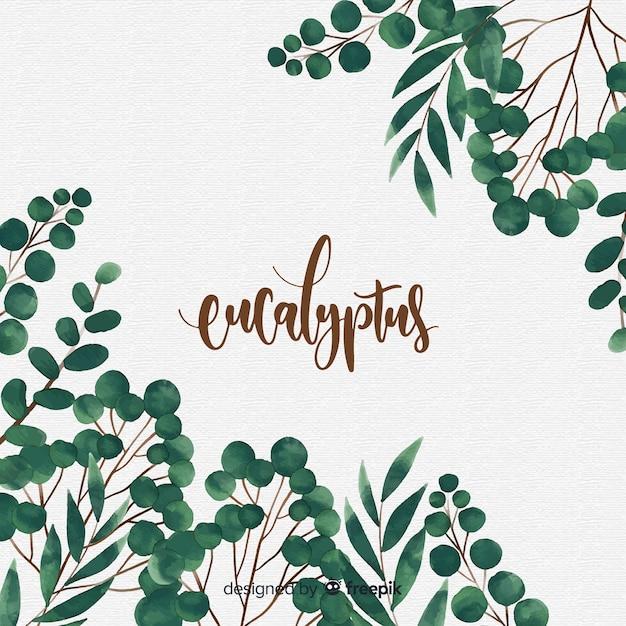 水彩ユーカリの葉の背景 無料ベクター