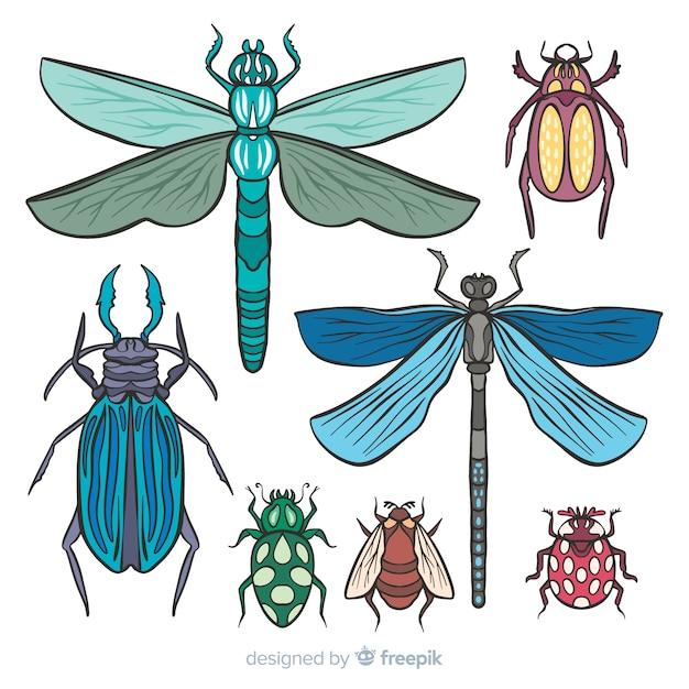 カラフルな手描きの昆虫コレクション 無料ベクター