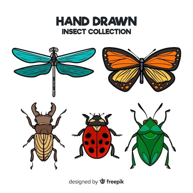 手描き昆虫コレクション 無料ベクター