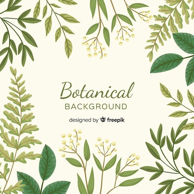 ビンテージ植物の背景 無料ベクター