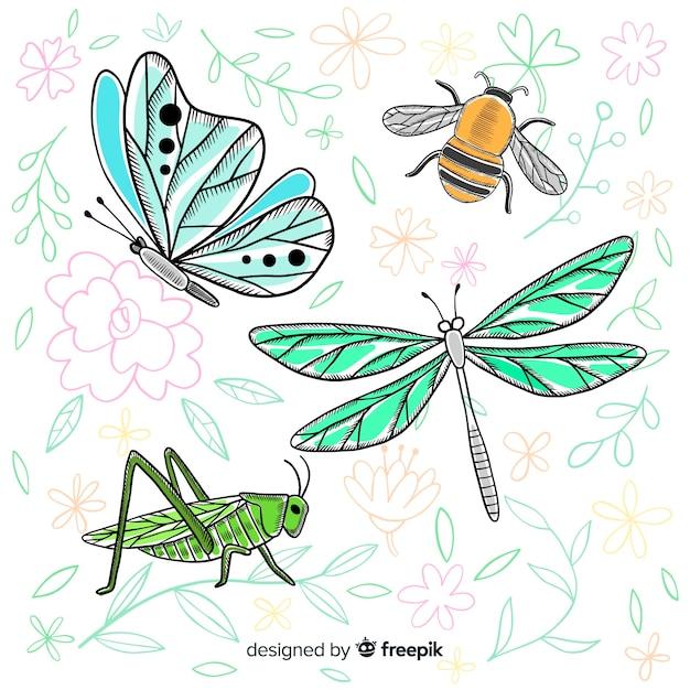 リアルな手描きの昆虫コレクション 無料ベクター