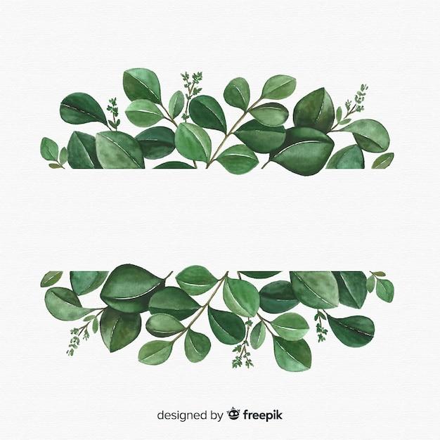 手描きのユーカリの葉の背景 無料ベクター