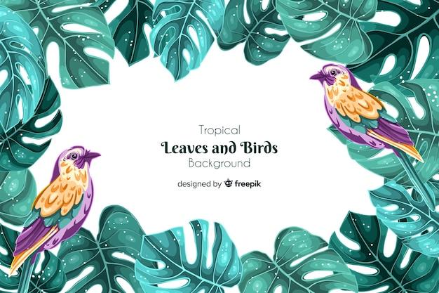 熱帯の鳥の背景 無料ベクター