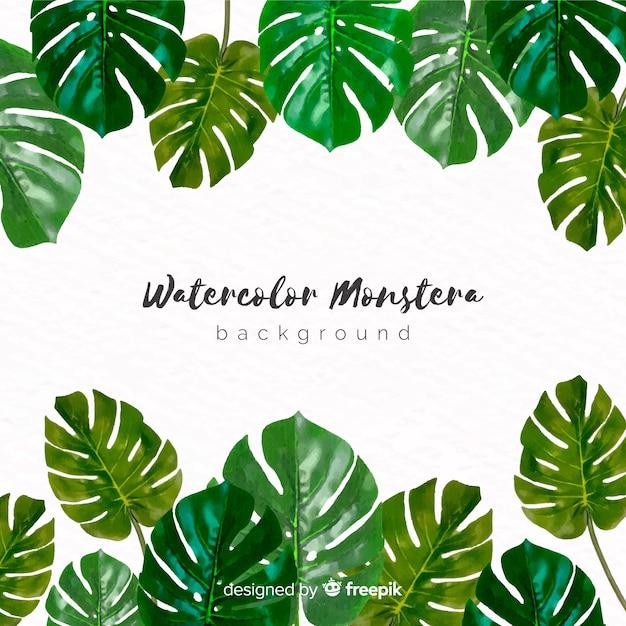 水彩モンステラの葉の背景 無料ベクター