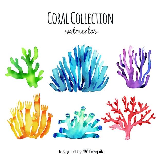 Коллекция акварелей кораллов Бесплатные векторы