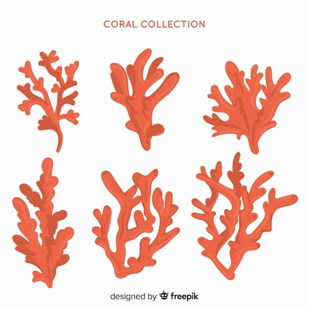 Коллекция рисованной кораллов Бесплатные векторы