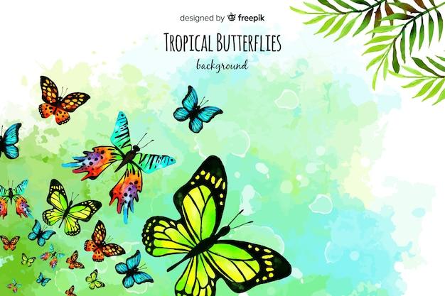 水彩蝶の背景 無料ベクター