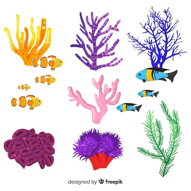 魚のコレクションと手描きのサンゴ 無料ベクター