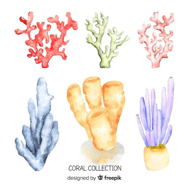 水彩サンゴコレクション 無料ベクター