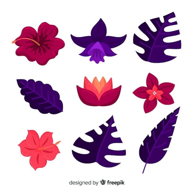 熱帯の花と葉 無料ベクター