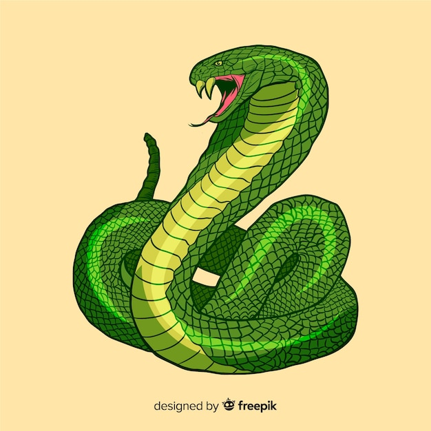 手描きのヘビのイラスト 無料ベクター