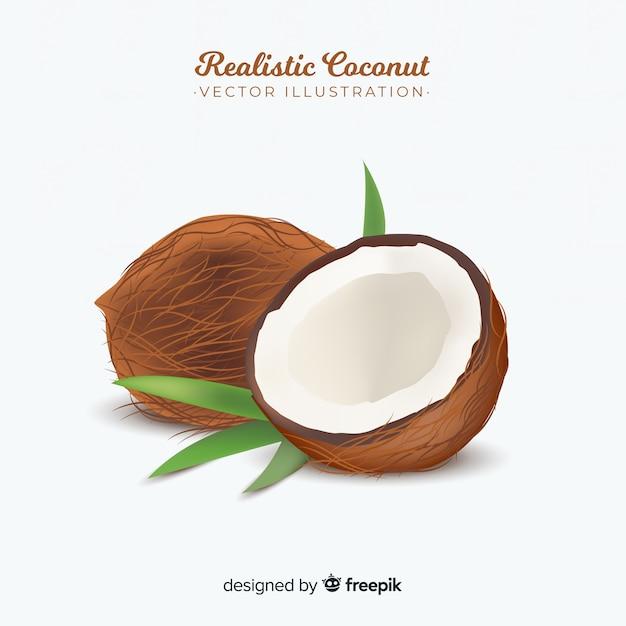 Реалистичная кокосовая иллюстрация Бесплатные векторы
