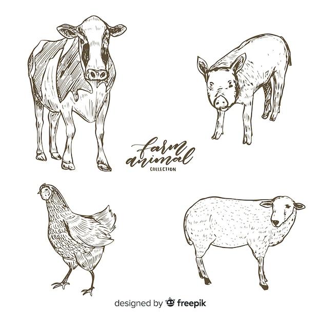 農場の動物コレクションの手描きスタイル 無料ベクター