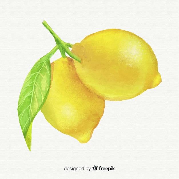 水彩レモンの背景 無料ベクター