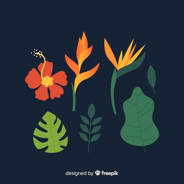平らな熱帯の花と葉 無料ベクター