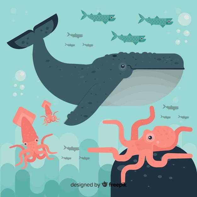平らな海洋生物キャラクターコレクション 無料ベクター