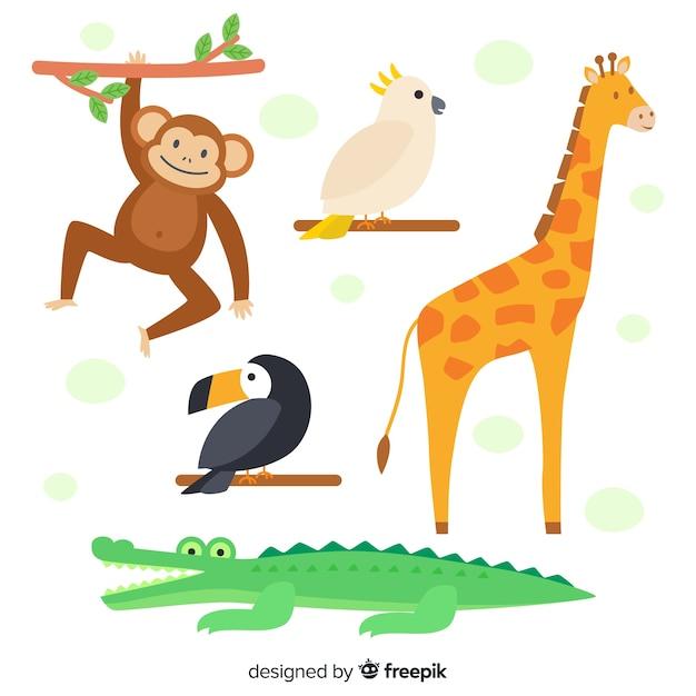 Плоский дизайн коллекции тропических животных Бесплатные векторы