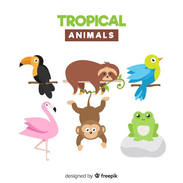 エキゾチックな動物のフラットコレクション 無料ベクター