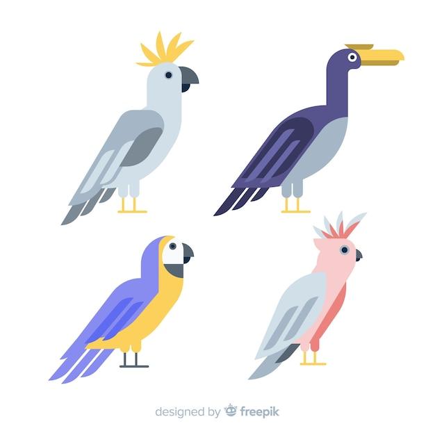 平らなエキゾチックな鳥のコレクション 無料ベクター