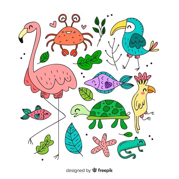 Набор тропических животных: фламинго, краб, птица, рыба, черепаха, хамелеон Бесплатные векторы