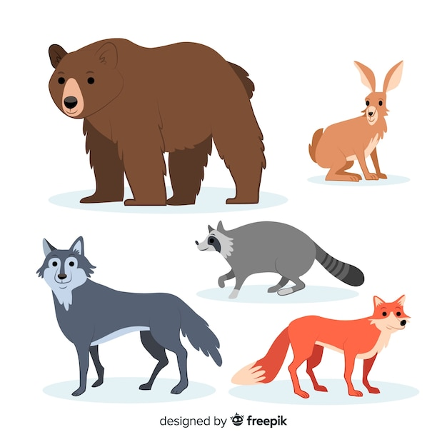 Коллекция рисованной животных осеннего леса Бесплатные векторы