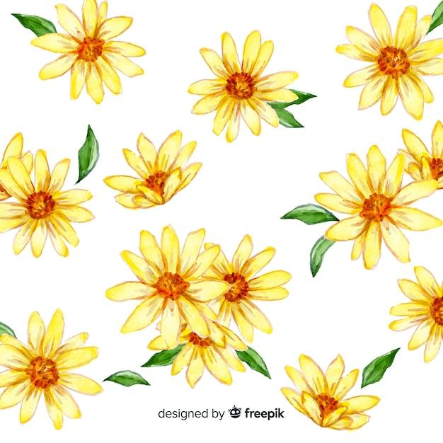水彩のデイジーの花と葉の背景 無料ベクター