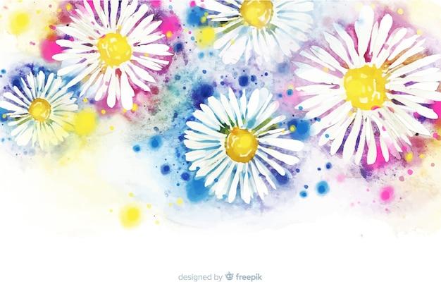 美しい水彩画デイジーの花の背景 無料ベクター