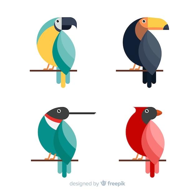 エキゾチックな熱帯の野鳥のコレクション 無料ベクター