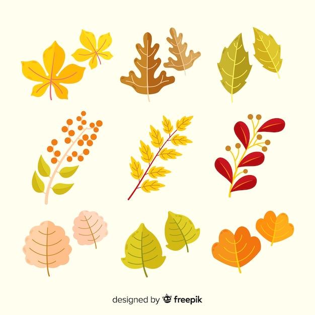 Осенние листья коллекции плоский дизайн Бесплатные векторы
