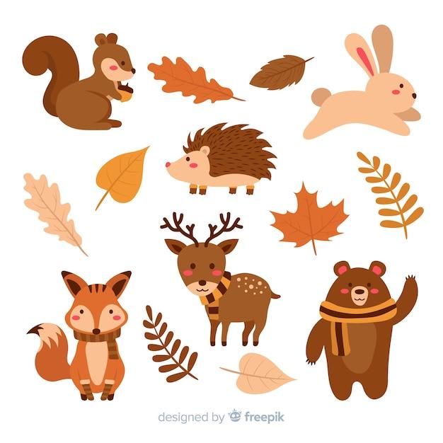 秋の森の動物フラットデザインのコレクション 無料ベクター