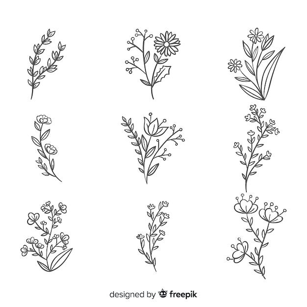リアルな手描きの花のコレクション 無料ベクター